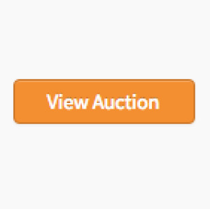 Online Moving Auction