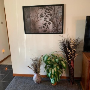 Planters and picture on wall