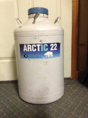 Arctic 22 Tank with 54 straws of semen